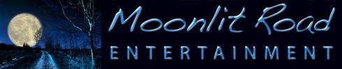 Moonlit Road Banner